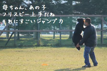 20101121-017.jpg