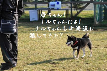20101121-018.jpg