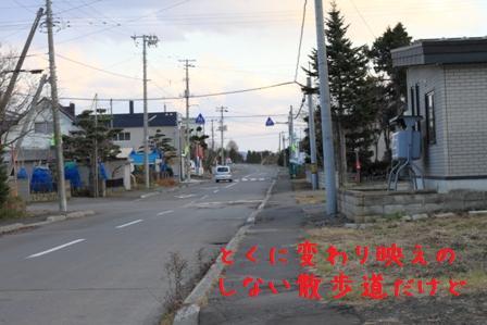 20101129-004.jpg