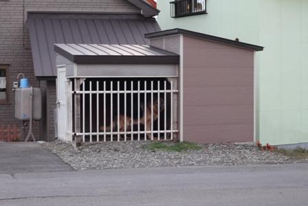 20101129-010.jpg