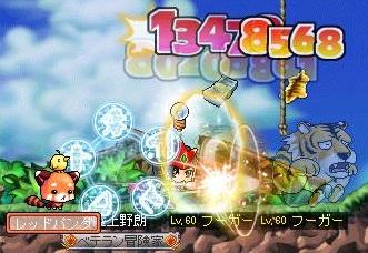 Maple110403_001022.jpg