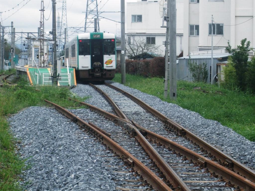 DSCF8139.jpg