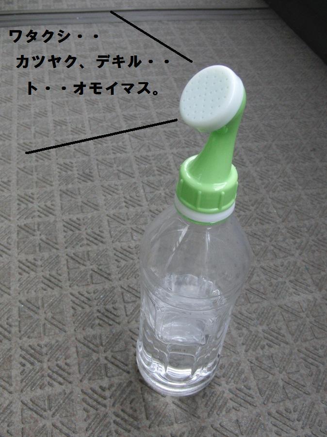 003_20100930093550.jpg