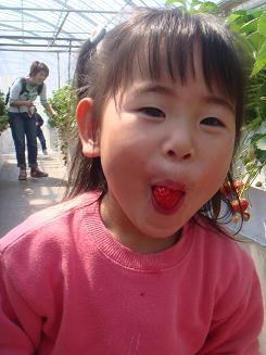 かなイチゴ