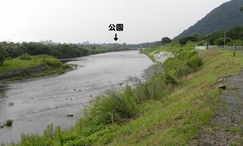 201007-0463.jpg