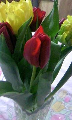 お花もらった★