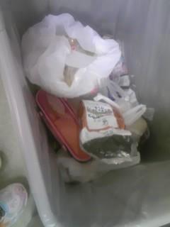 無残なランチボックスinゴミ箱