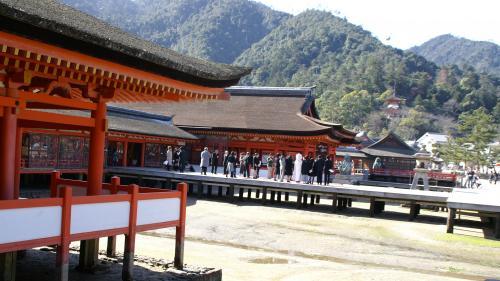 厳島神社 花嫁