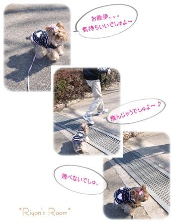 小金井公園③