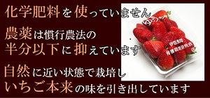 76ba6[1]-土橋