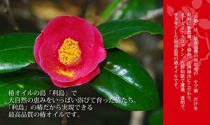 fot_toshima1[1]-tubakinohana