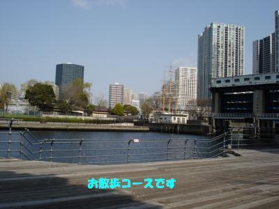 ビル風 お散歩コース