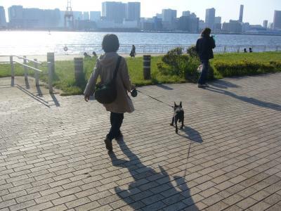 お散歩日和ですゎ