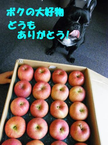 りんご、どうもありがとう~!