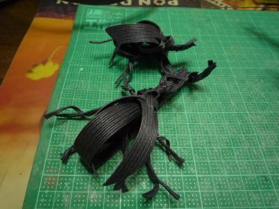 beetle4.jpg