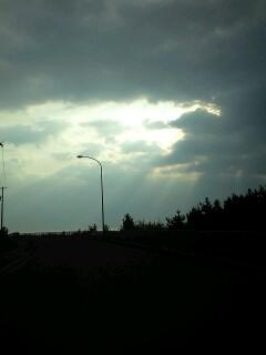 曇り空からの木漏れ日