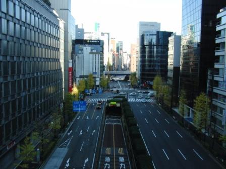 初めて乗るゆりかもめ 新橋~銀杏の葉がまだ付いてる.JPG
