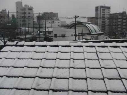 B こっちの屋根もいい感じ.JPG