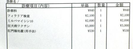 CIMG8003.JPG