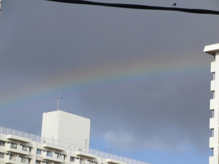 虹が出てる♪.JPG