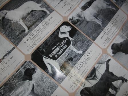 警察犬ポスター.JPG