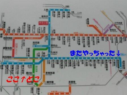 CIMG7194_sh02.JPG