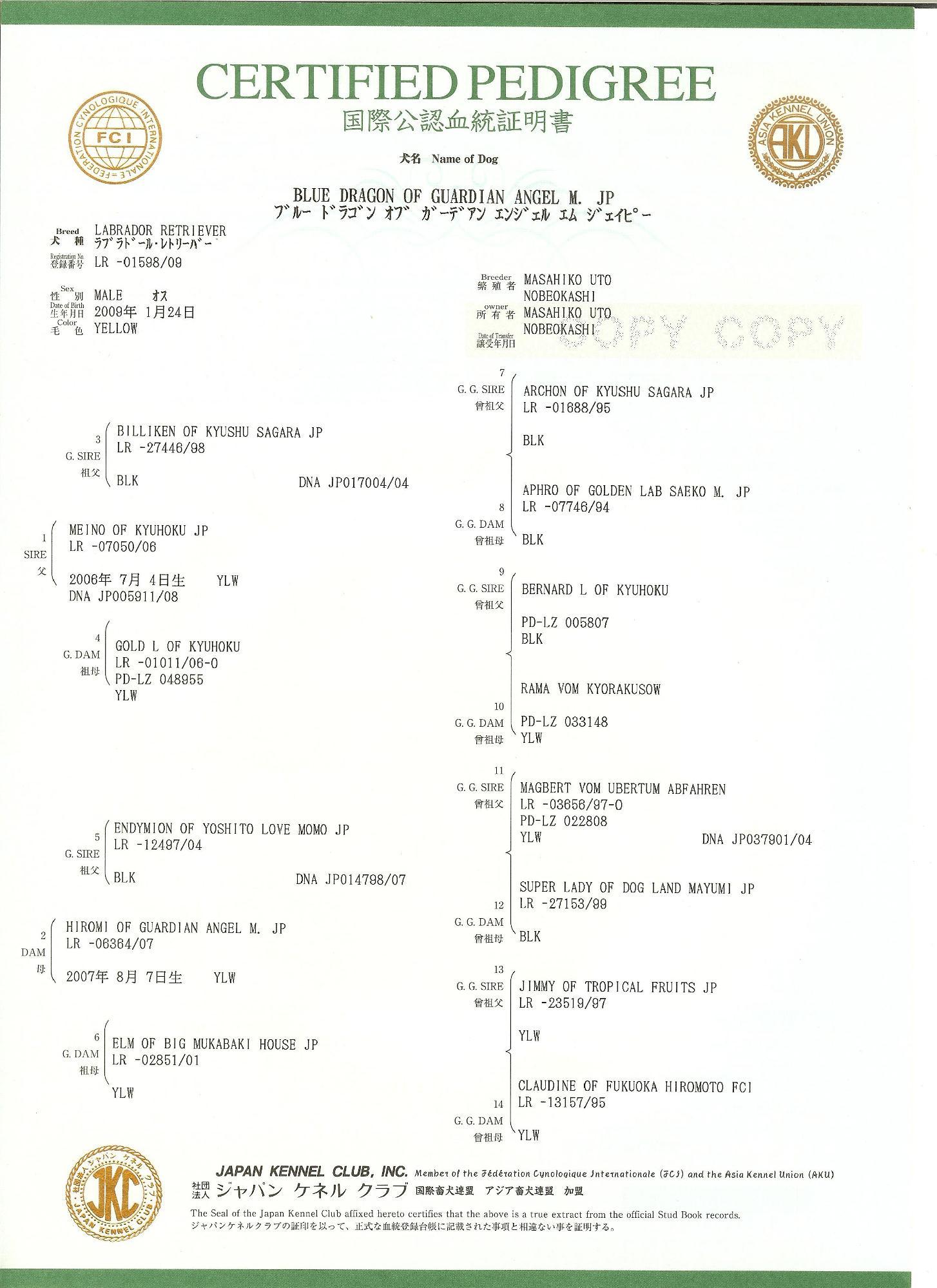 血統証明書 002 3.jpg