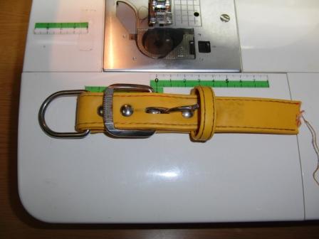 CIMG3590.JPG