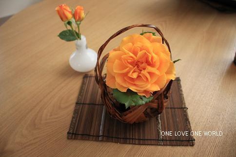 ときたさんのお花