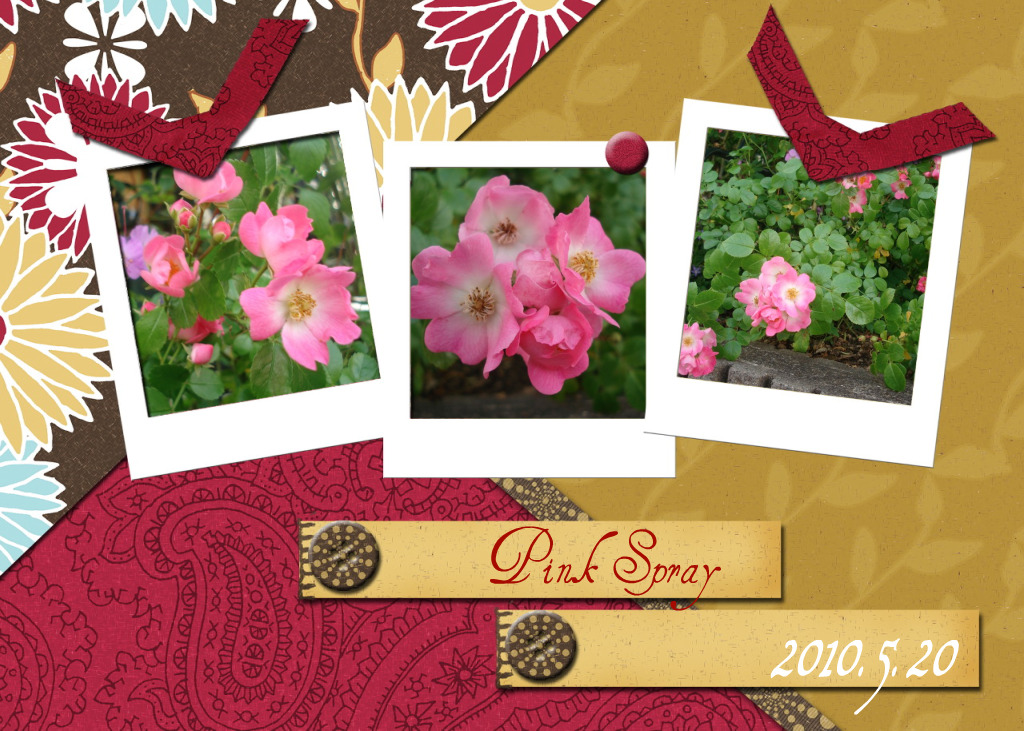Pink Spray-11