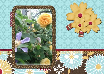 2_20100703214103.jpg