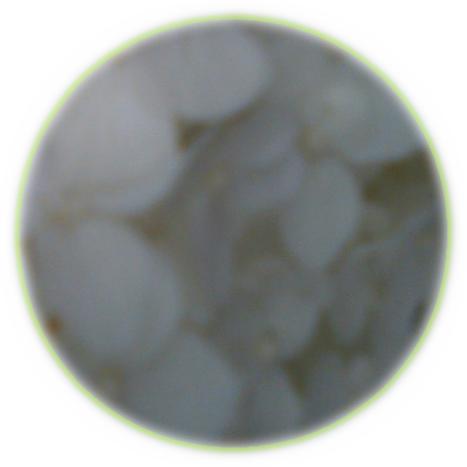 SN3G0030.png