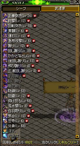 600Lv武道スキル