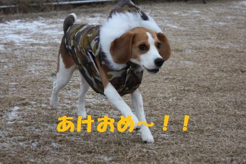 IMG_7834_convert_20100101161835.jpg