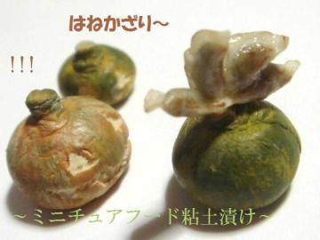 餃子+かぼちゃ達2