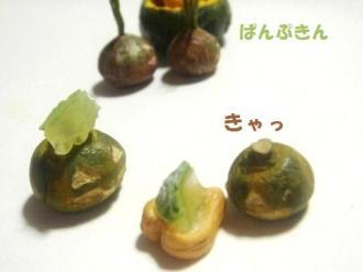 メロンゼリーとかぼちゃ達3