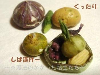お漬け物(旧)+かぼちゃ達2