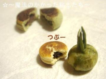 どら焼き(皮割れ)+かぼちゃ