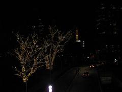 tokyomidtown05.jpg