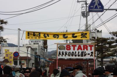 shitami (21)