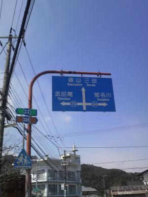 shitami (8)