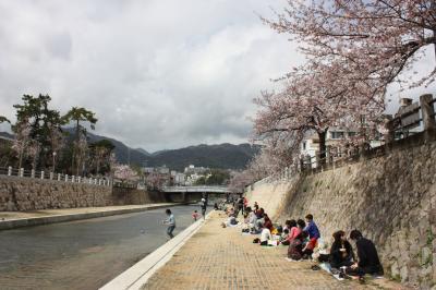 sakura2011 (9)