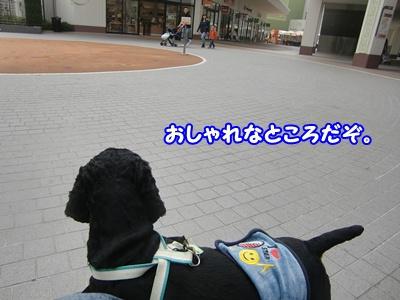 2012_0328_105551-CIMG9834.jpg