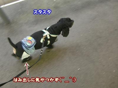 2012_0328_110116-CIMG9837.jpg