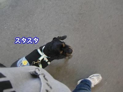 2012_0328_110139-CIMG9840.jpg