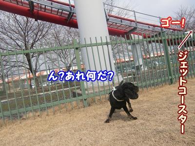 2012_0328_111205-CIMG9845.jpg