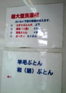 CA3A4546.jpg
