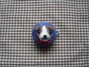 羊毛1 333
