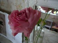 2011_0329_141407-P1120649_convert_20110329135900.jpg