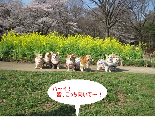 IMG_7409記念撮影